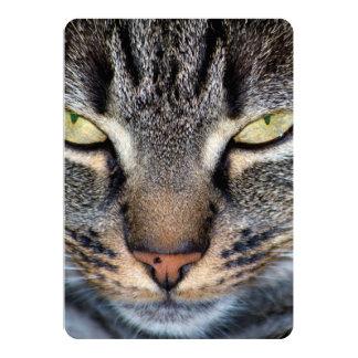 Grey Cat Face Closeup 13 Cm X 18 Cm Invitation Card