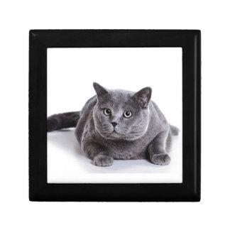 Grey Cat Gift Box