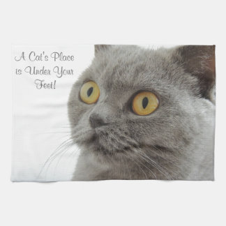Grey Cat Golden Eyes Close-up Kitchen Towel