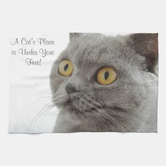 Grey Cat Golden Eyes Close-up Tea Towel