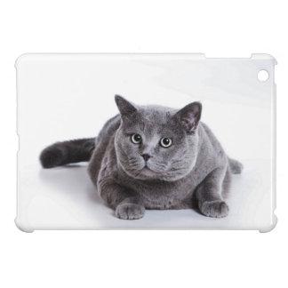 Grey Cat iPad Mini Case