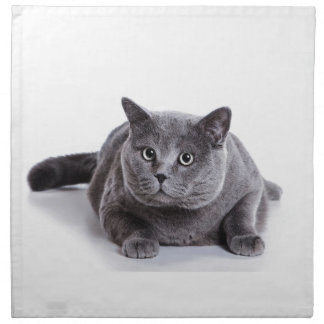 Grey Cat Napkin