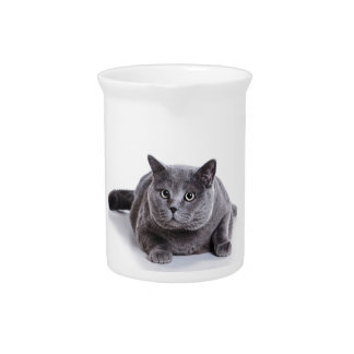Grey Cat Pitcher
