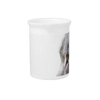 Grey cat pitcher