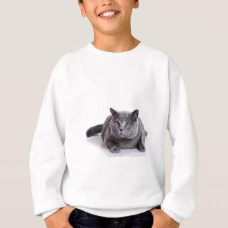Grey Cat Sweatshirt