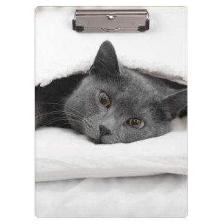 Grey Cat Under White Blanket Clipboard