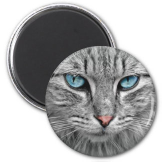Grey Cat w/Blue Eyes 6 Cm Round Magnet