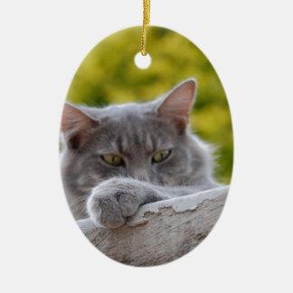 Grey Cats Paw Ceramic Oval Decoration