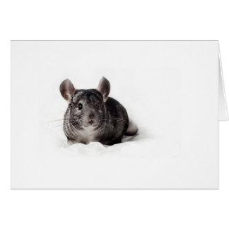 Grey Chinchilla Cute in Blanket Greeting Card