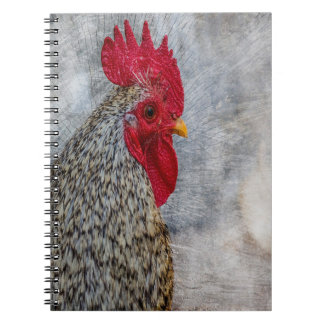 Grey Country Rooster Notebooks