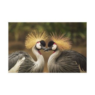 Grey Crowned Crane bird couple Gallery Wrapped Canvas
