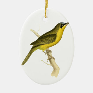 Grey-crowned Tanager Bird Illustration by William Ceramic Oval Decoration