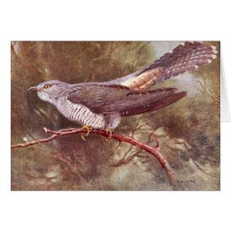 Grey Cuckoo Vintage Illustration Card