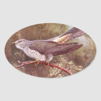 Grey Cuckoo Vintage Illustration Oval Sticker