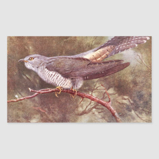 Grey Cuckoo Vintage Illustration Rectangular Sticker