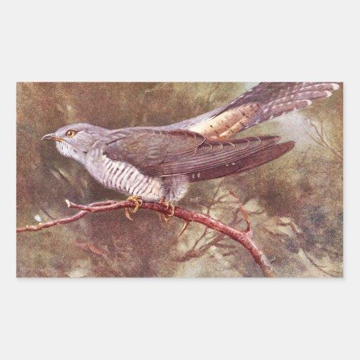 Grey Cuckoo Vintage Illustration Rectangle Stickers
