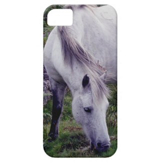 Grey Dartmoor Pony Grazeing Autunm Barely There iPhone 5 Case