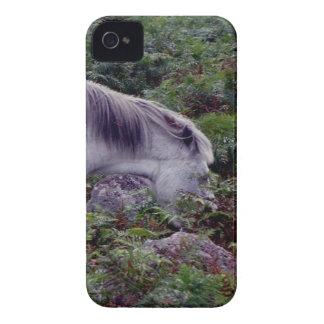 Grey Dartmoor Pony Grazeing in Bracken  (2). iPhone 4 Case