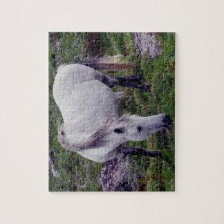 Grey Dartmoor Pony Grazeing In Rocks Jigsaw Puzzle