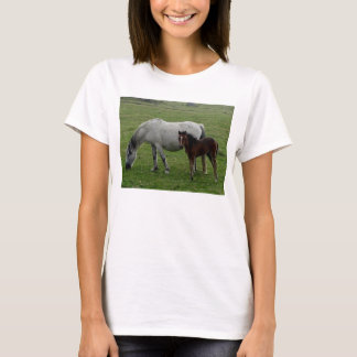 Grey Dartmoor Pony Mare Grazing With Foal T-Shirt