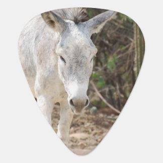 Grey Donkey Pick