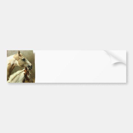 Grey Eventing Horse Bumper Sticker