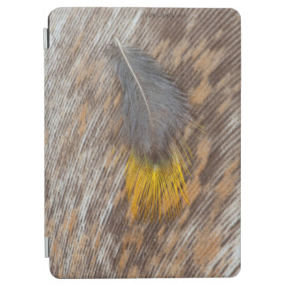 Grey Feather Still Life iPad Air Cover