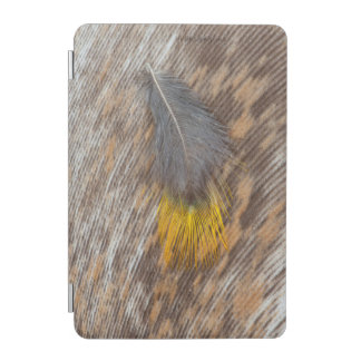 Grey Feather Still Life iPad Mini Cover