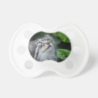 Grey Fuzzy Kitty Cat BooginHead Pacifier