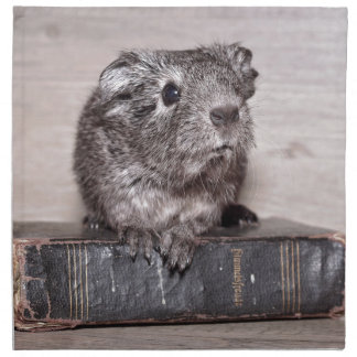 Grey Guinea Pig on Book Napkin