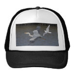 Grey Heron Air Battle Hats