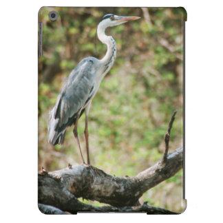 Grey Heron (Ardea Cinerea), South Africa Cover For iPad Air