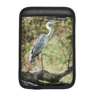 Grey Heron (Ardea Cinerea), South Africa iPad Mini Sleeve