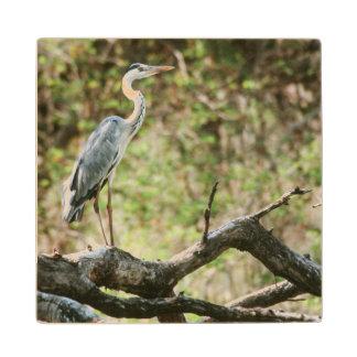 Grey Heron (Ardea Cinerea), South Africa Wood Coaster