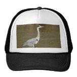 Grey Heron Mesh Hat