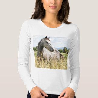 Grey Horse in Paddock Long Sleeve Ladies T-Shirt