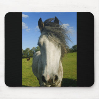 Grey horse mouse pad