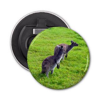 Grey Kangaroos On Green Grass, Bottle Opener. Bottle Opener