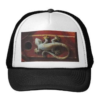 grey lizard on worn wood cap