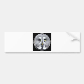 """""""Grey Owl"""" Bumper Sticker"""