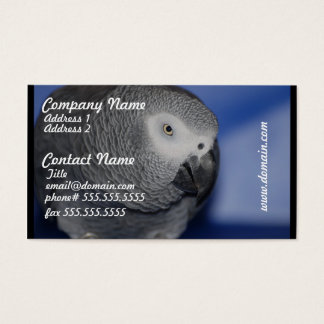 Grey Parrot Business Card