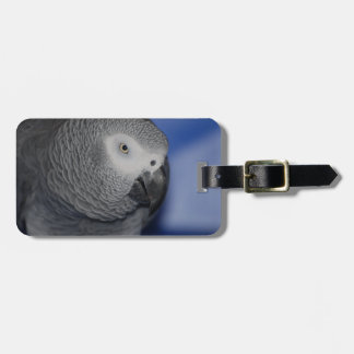 Grey Parrot Luggage Tag