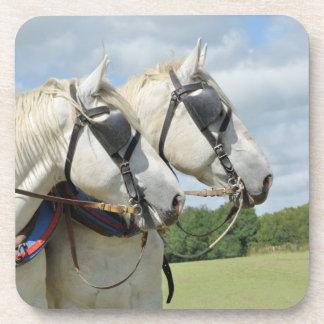 Grey Percheron horses Coasters