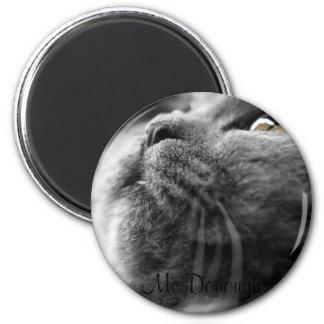Grey Persian Cat Refrigerator Magnet
