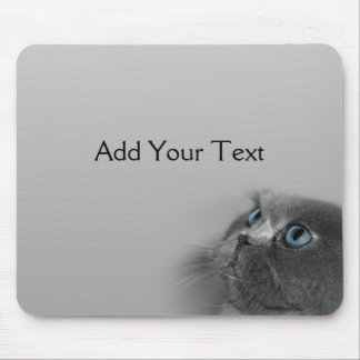 Grey Persian Cat with Blue Eyes on Grey Mouse Mat