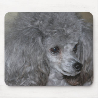 Grey Poodle Mouse Pad
