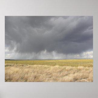Grey Rain On Golden Field Poster