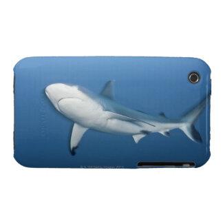 Grey reef shark (Carcharhinus amblyrhynchos) Case-Mate iPhone 3 Cases
