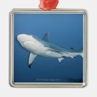 Grey reef shark (Carcharhinus amblyrhynchos) Christmas Ornament