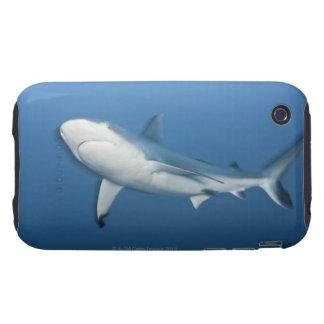 Grey reef shark (Carcharhinus amblyrhynchos) iPhone 3 Tough Covers